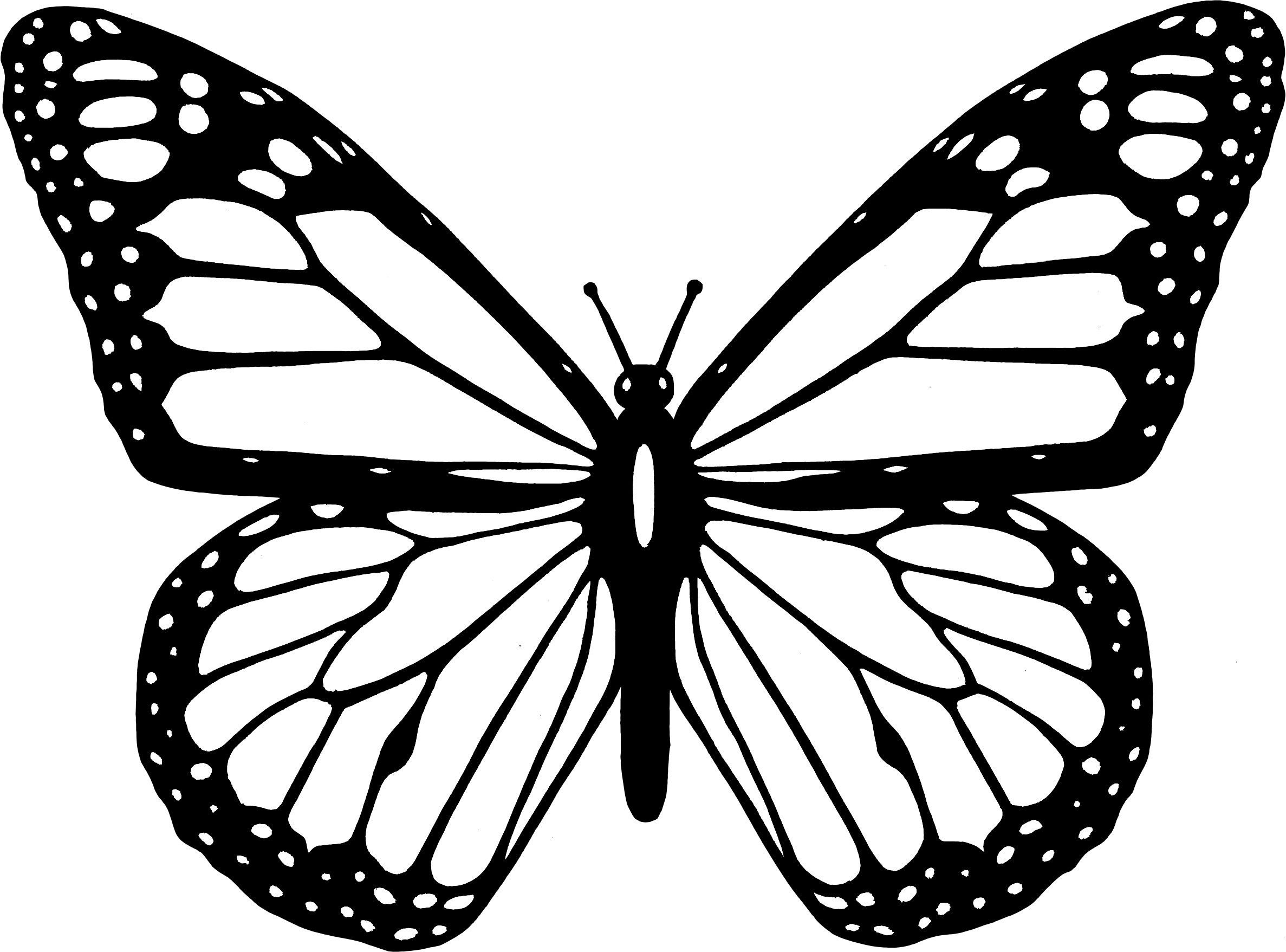47+ Monarch butterfly clipart black and white ideas in 2021