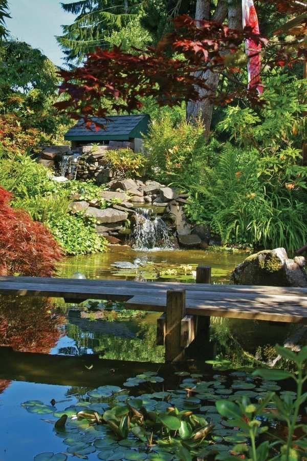 Construire un bassin à koi dans son jardin Koi