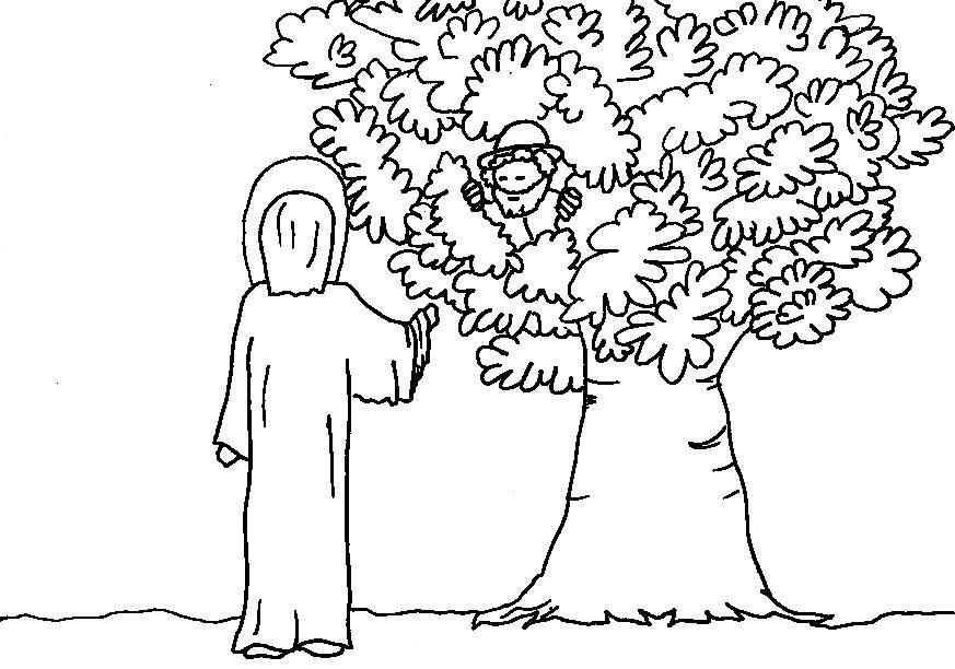 coloring pages zaccheus Zacchaeus