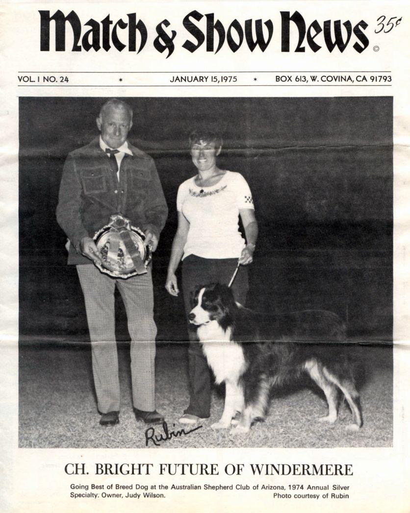 Sunny winning 1975 in 2020 Australian shepherd, Aussie