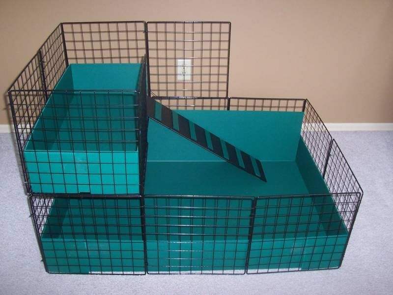 New large 42 x 28 guinea pig cage with 2nd level for Coroplast guinea pig cage for sale