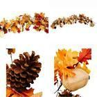 Craftmore Fall Leaf Garland With Fabric Acorns #HomeDécor #leafgarland Craftmore Fall Leaf Garland With Fabric Acorns #HomeDécor #leafgarland Craftmore Fall Leaf Garland With Fabric Acorns #HomeDécor #leafgarland Craftmore Fall Leaf Garland With Fabric Acorns #HomeDécor #leafgarland