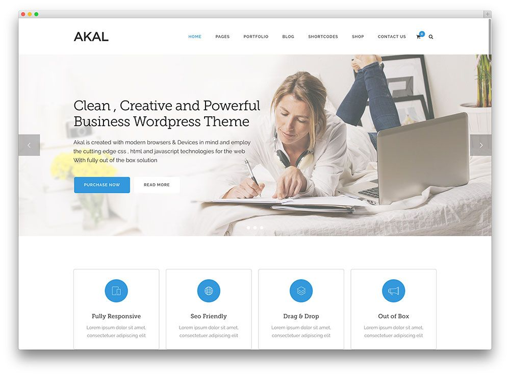 akal clean creative consulting business theme BridgeNet - wordpress resume template
