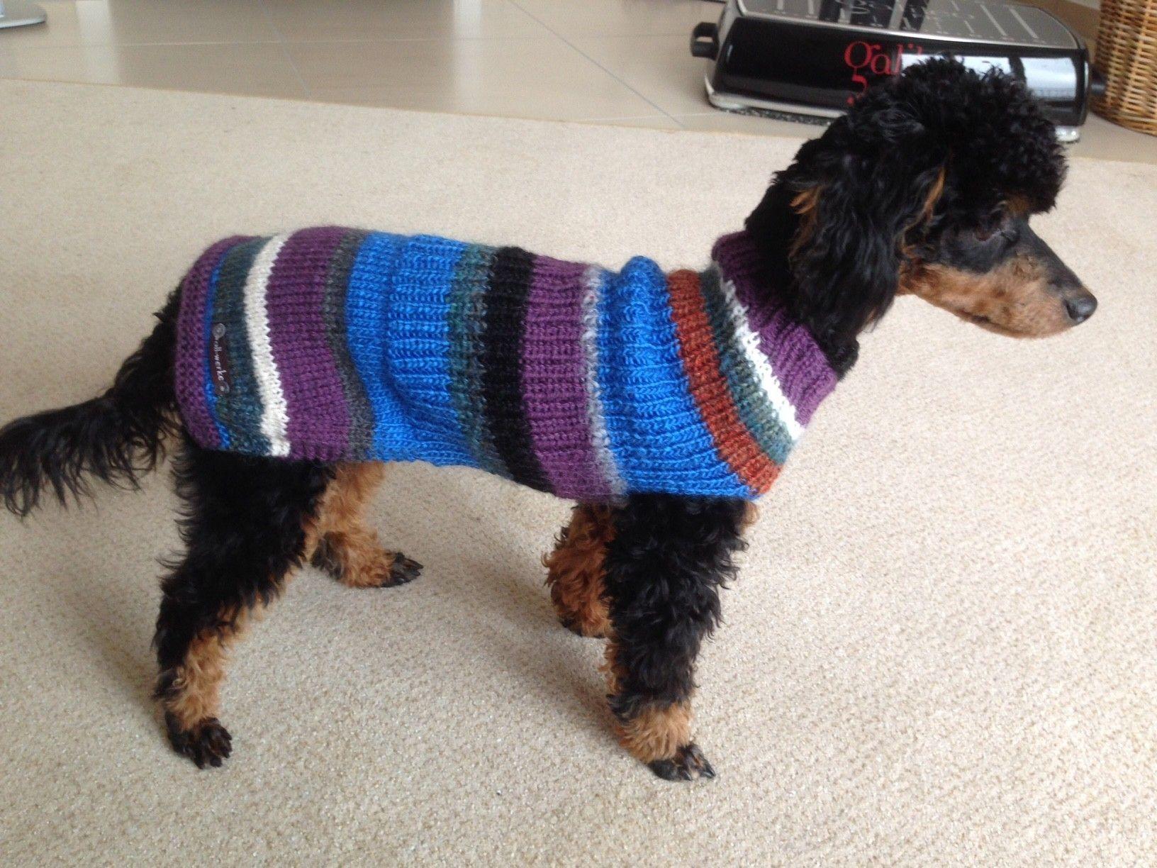 Hundemantel aus Wollresten | Hundepullover | Pinterest ...