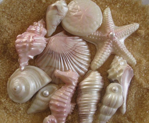 827 Seashell Candy Mold Chocolate Gumpaste Soap Candle Wax Clay Silicone Mold
