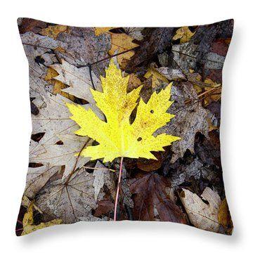Autumn feeling by svetlanistaya. One yellow maple leaf among fallen leaves, autumn. #Svetlanistaya #MapleLeaf #Pillow #HomeDecor