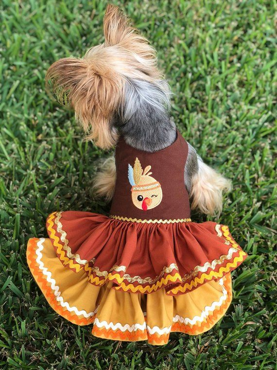 1ee85d6090f9 Thanksgiving Turkey Dog Dress, Customizable to your pets measurements!!  Size XXS XS and