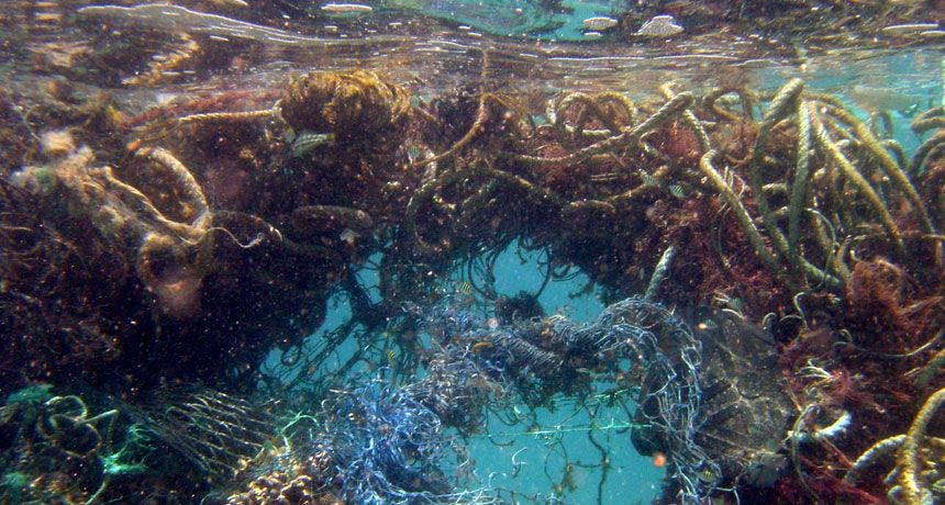 Image result for jacques cousteau rubbish in the ocean