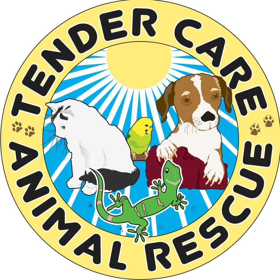 Tender Care Animal Rescue Tender care, Animal rescue, Rescue