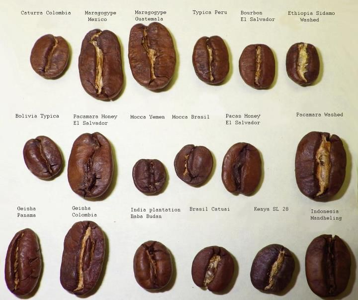 Different Types Of Beans Coffee Recipes Gourmet Coffee Coffee Varieties