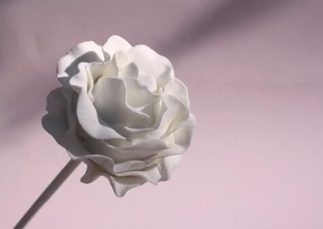 [HOWTO] rozencake-pop (Pagina 1) - Sjablonen, Patronen ...
