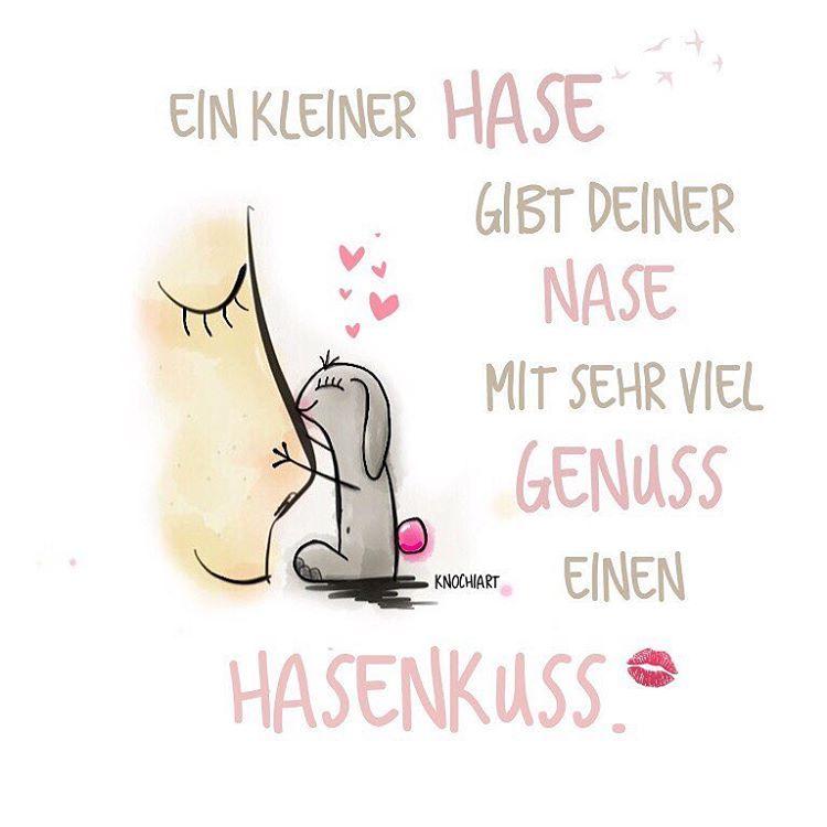 💜 Ein kleiner #Hase gibt deiner #Nase mit sehr viel #Genuss einen