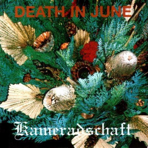 ' Kameradschaft '   by Death in June, 1998