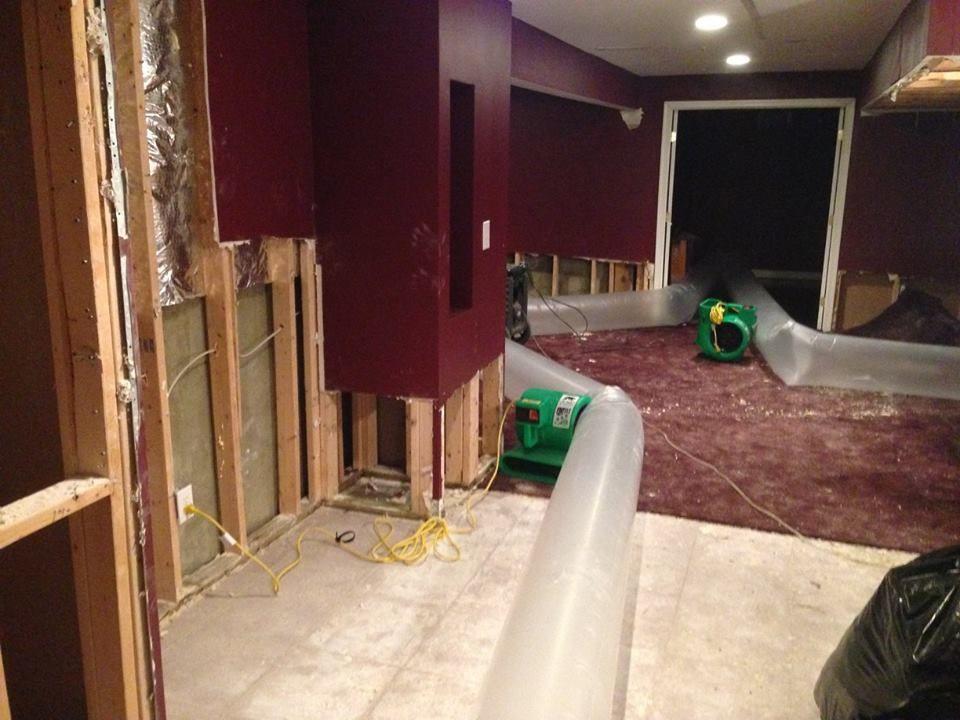 Carpet Cleaning Alexandria Va Area Rug Hardwood Floor Polishing