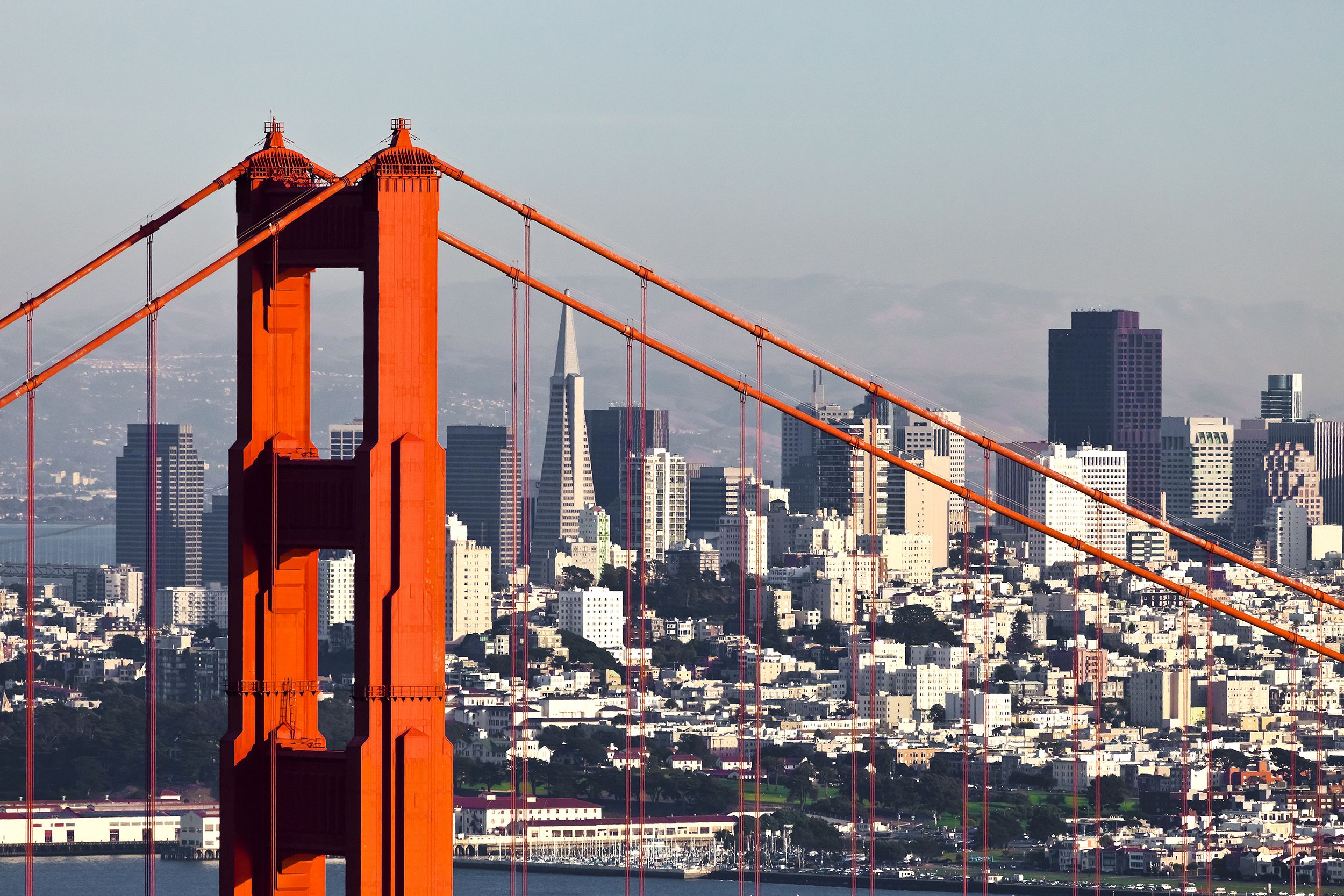20 free and cheap things to do in san francisco seattle