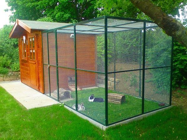 au enhaltung tierhaltung pinterest kaninchenhaltung kaninchen und begehbar. Black Bedroom Furniture Sets. Home Design Ideas