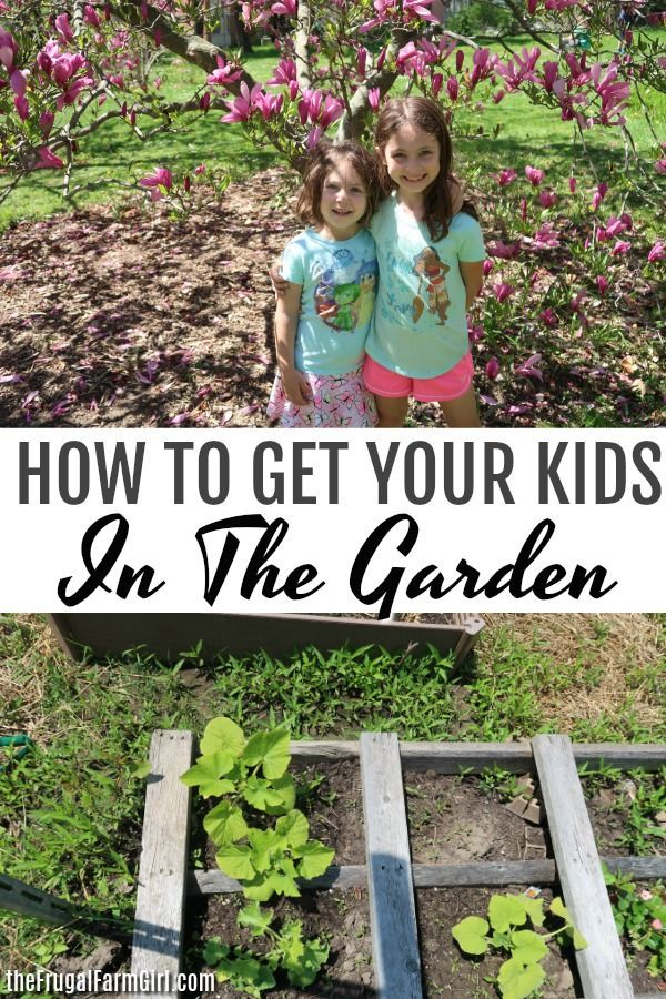 5 Fun & Frugal Ways To Garden With Your Kids is part of garden Kids Activities - Are you looking for ways to get your children involved in gardening activities  You don't need a ton of space or lots of money to get started with these five fun and frugal gardening activities