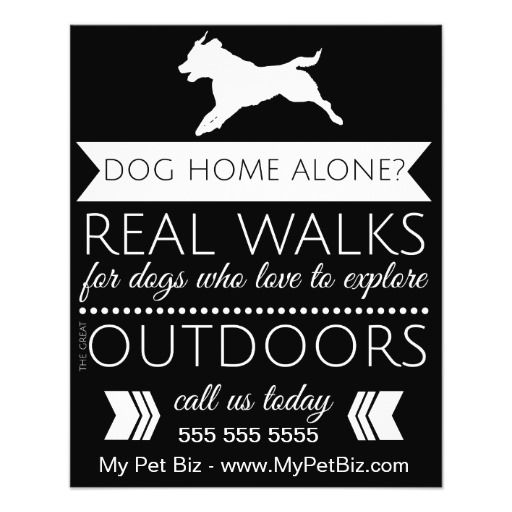 Dog Walker Flyer Personalizable Dog Walking Flyer Dog Walker Flyer Dog Walking Business