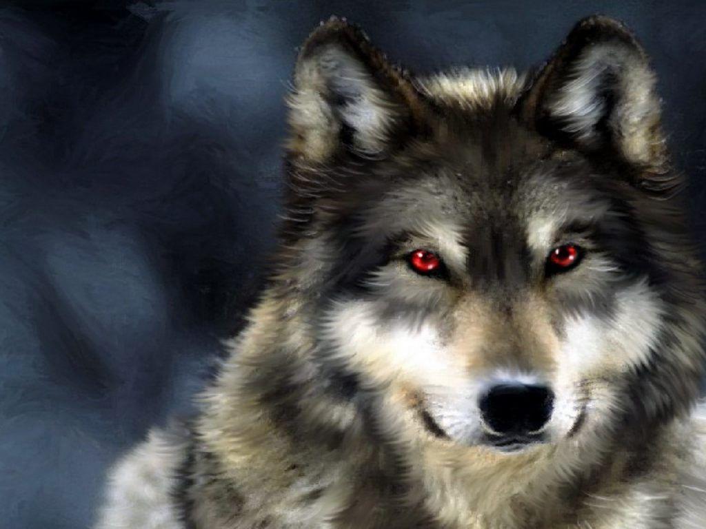 Imagenes De Lobo Para Fondo De Pantalla: Imagenes De Lobos Para Fondo De Pantalla Con Frases