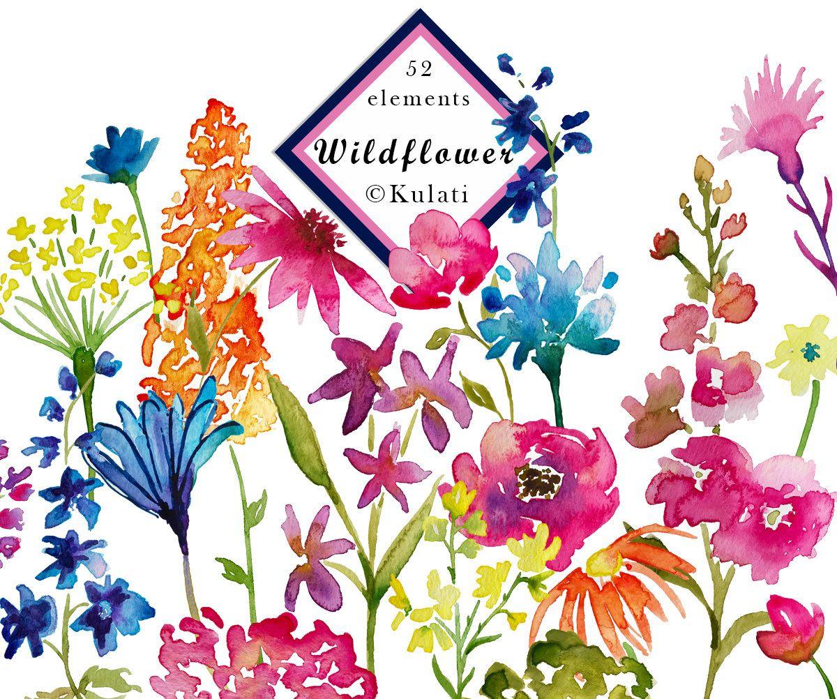 INSTANT DOWNLOAD watercolor wildflower clipart watercolor ...