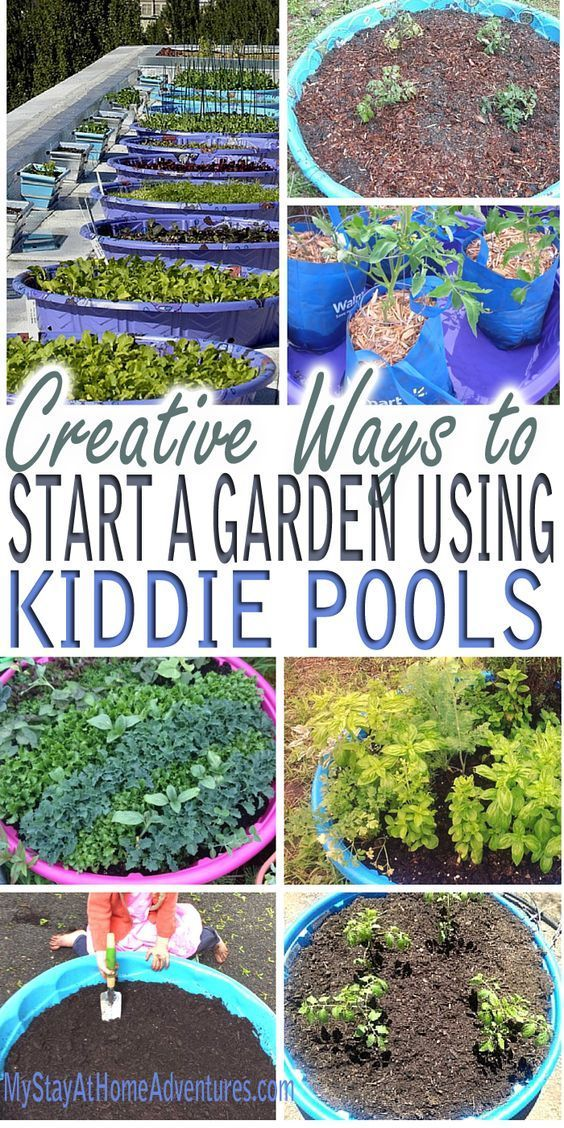 Creative Ways to Start a Garden Using Kiddie Pools is part of garden Pool Tips - See the reasons and ideas as to why we will expand our garden using kiddie pools this year  The ways to use kiddie pools to grow your garden are clever