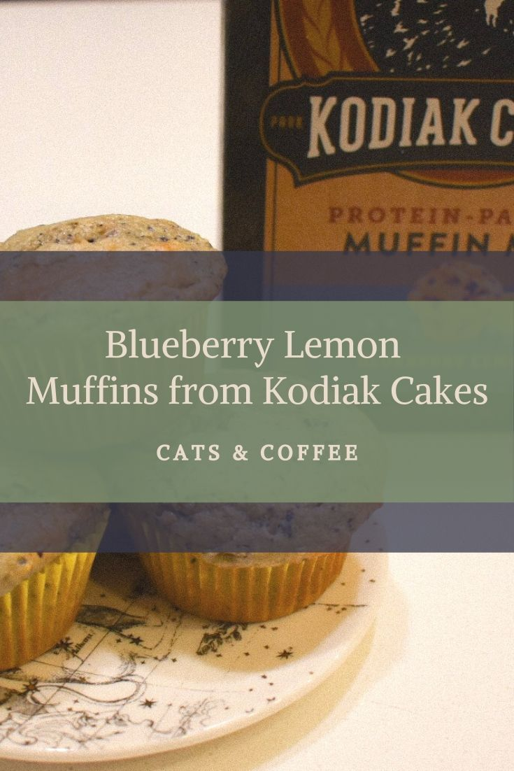Blueberry muffin mix from kodiak cakes healthy blueberry