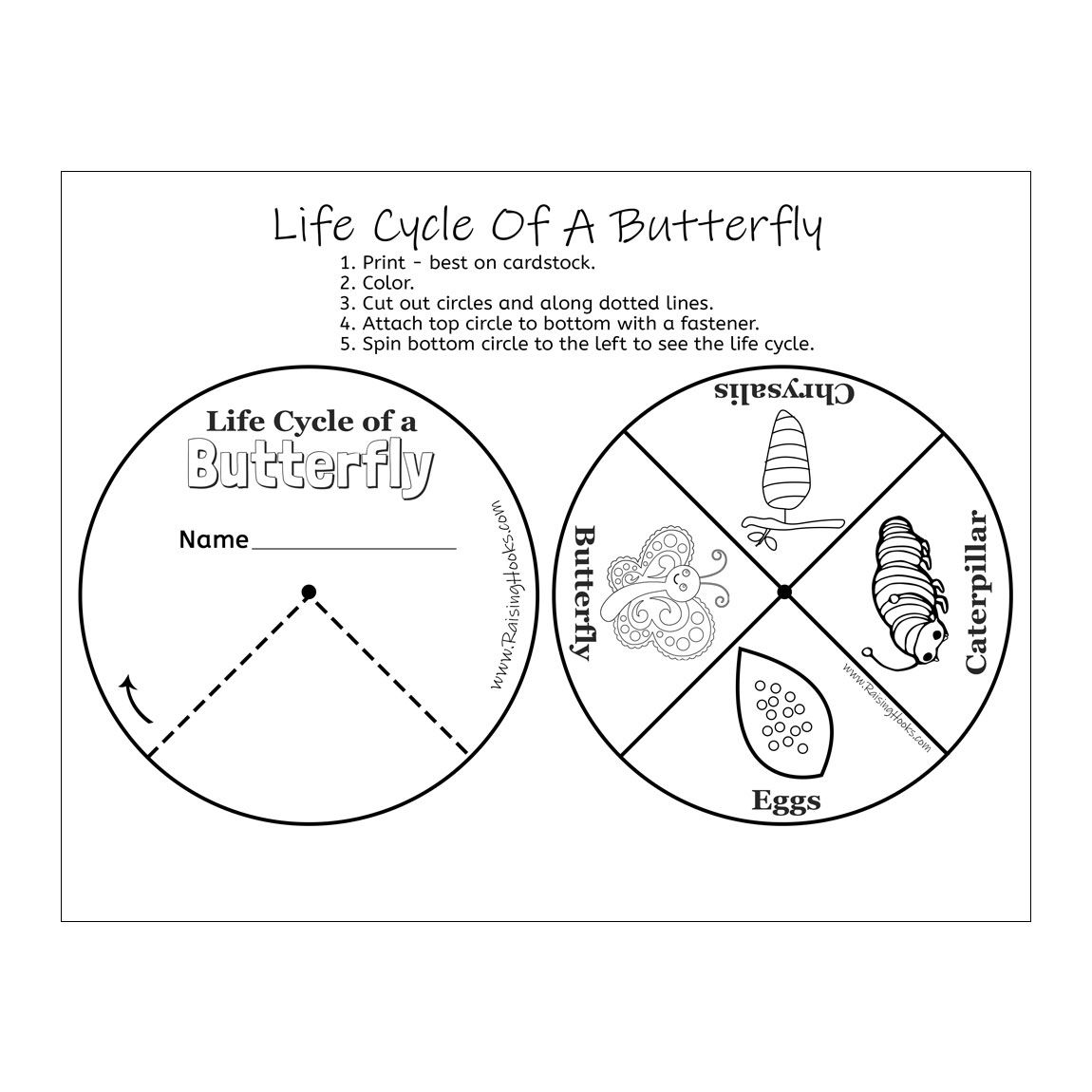 Predownload: Life Cycle Of A Butterfly Wheel Raising Hooks Life Cycles Butterfly Life Cycle Activity Ladybug Life Cycle [ 1150 x 1150 Pixel ]