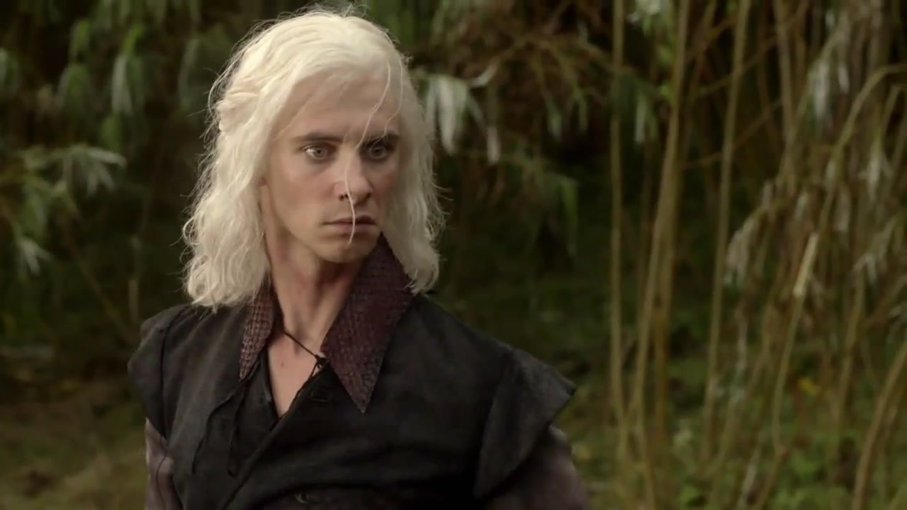 Visery Targaryen - another claimant to the throne. Son of the Mad King Aerys. Viserys' older brother Rhaegar was a great warrior and honourable man, and Daenarys likewise embodies some of those qualities and leadership skills. Viserys however, looks like he has more of the famous Targaryen 'madness' in him. Often delusional, impatient, and always selfish, Viserys soon finds himself in trouble.
