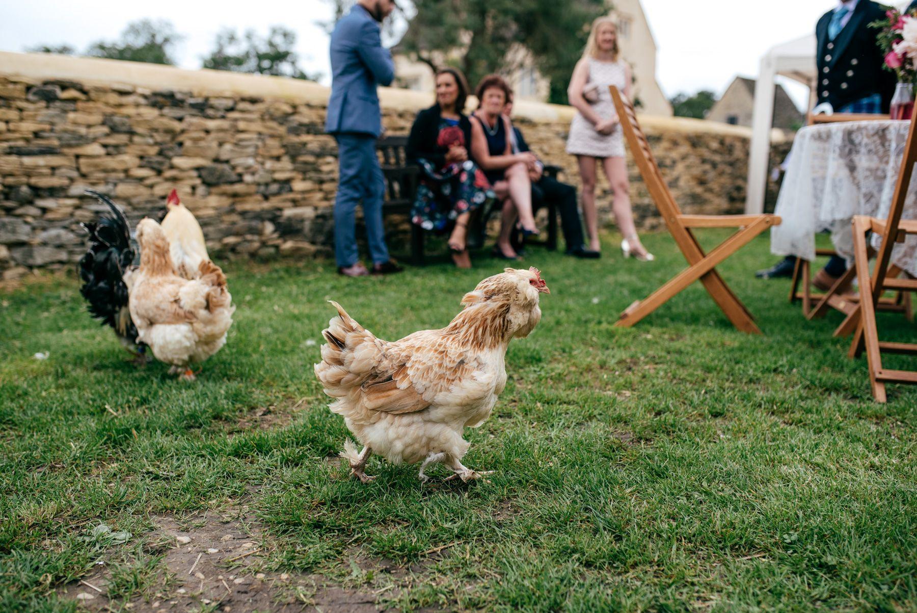 Creative wedding at Cogges Manor Farm Wedding venue from alternative wedding…