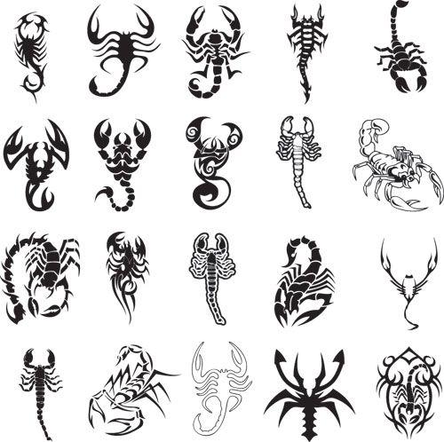 Different Scorpion Tattoo Ideas Tattoos Tattoos Tattoo