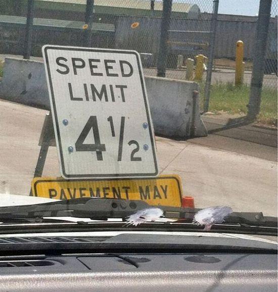Speed Limit 4 1/2