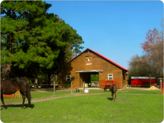 Old Mcfaye S Farm Great Location For Laney S 5th Birthday Party Cowgirl Birthday Party Cowgirl Birthday Birthday Party