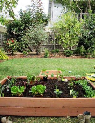 Diy Raised Bed Vegetable Garden Vegetable Garden Diy Vegetable Garden Raised Beds Raised Vegetable Gardens