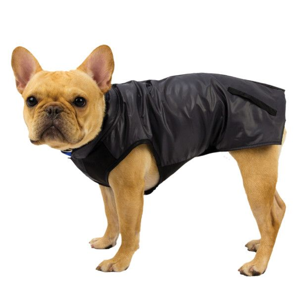 French Bulldog Jacket / Sweater. Black is so slimming.
