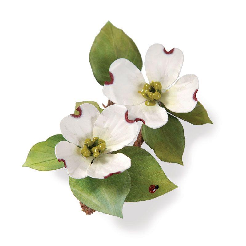 sizzix susan s garden collection thinlits die flower dogwood