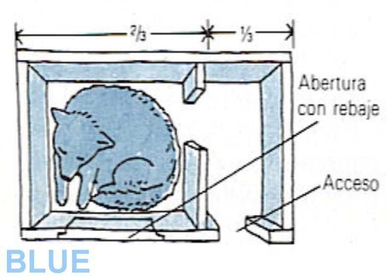 Tips c mo hacer una casa para perro vivienda canina for Construir casa de perro