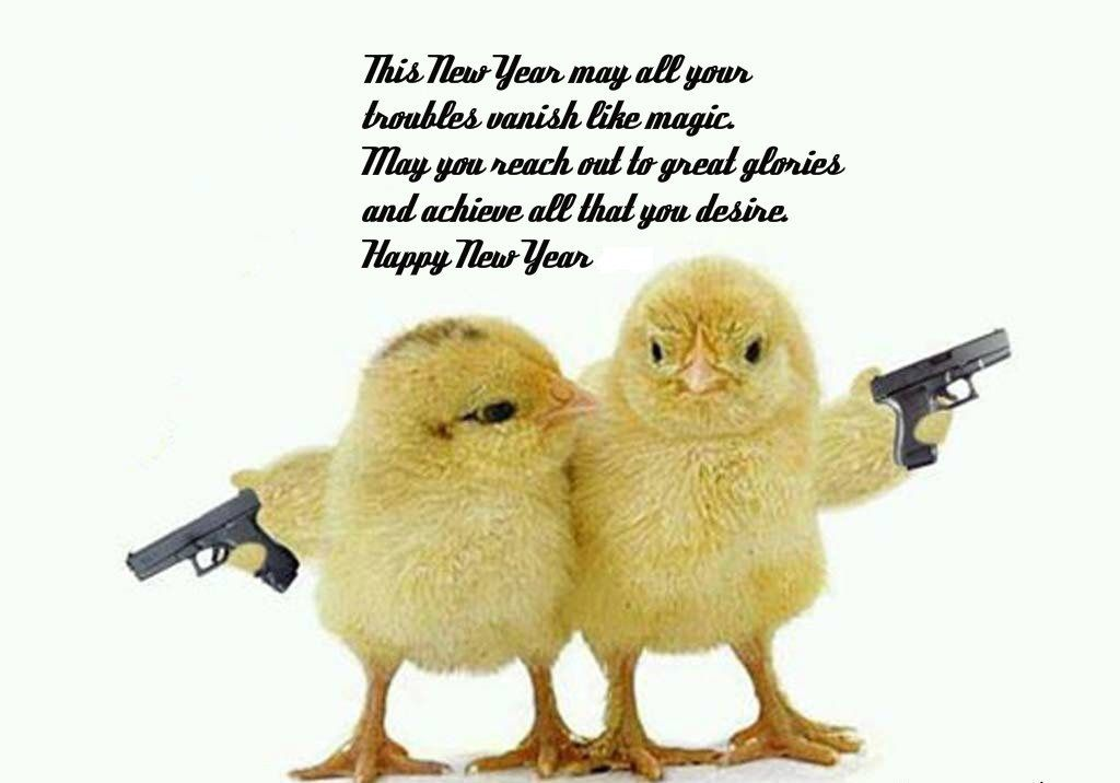 New Year Wishes Funny Pictures Newyearwishesfunnypictures