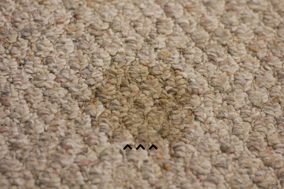 19 Bewitching Modern Upholstery Colour Ideas Carpet Upholstery Cleaner Upholstery Cleaner Diy Carpet