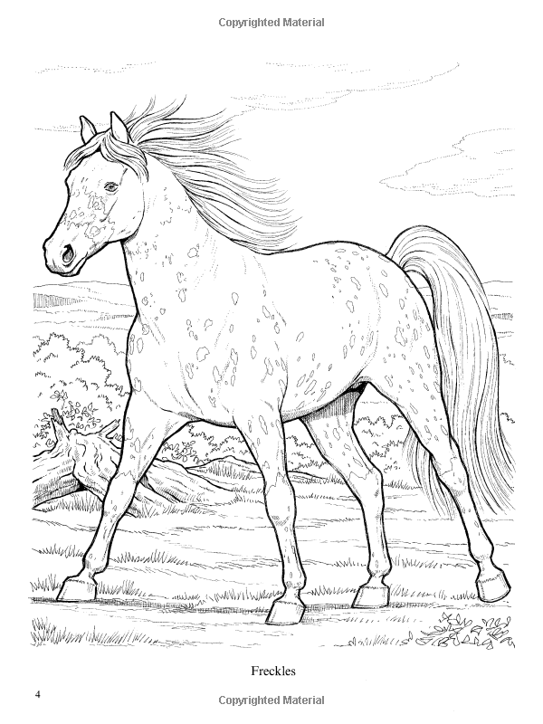 Wonderful World Of Horses Coloring Book Dover Nature John Green 0800759444656 Amazon Books