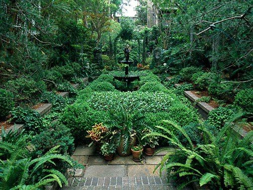 Georgia Garden: Courtyard Gardens Of Charleston And Savannah On Pinterest