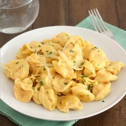 Tortellini with Pumpkin Alfredo Sauce: quick and easy fall comfort food