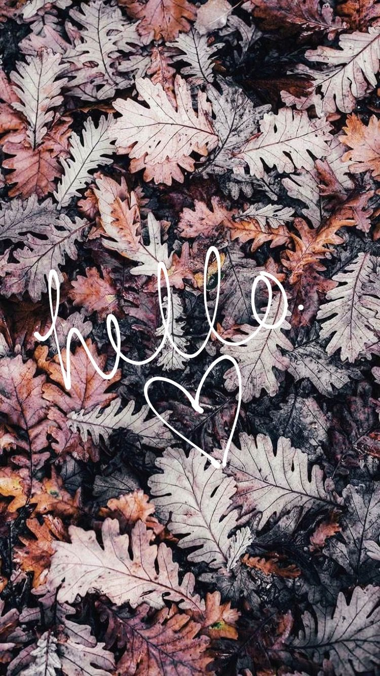 Hello Fall Leaves Iphone Wallpaper Autumn Leaves Wallpaper Fall Wallpaper Fall Wallpaper Tumblr