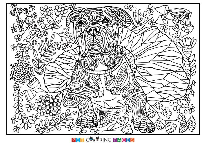 Very Detailed Coloring Pages On Images Free Download For: Free Printable American Pit Bull Terrier Coloring Page
