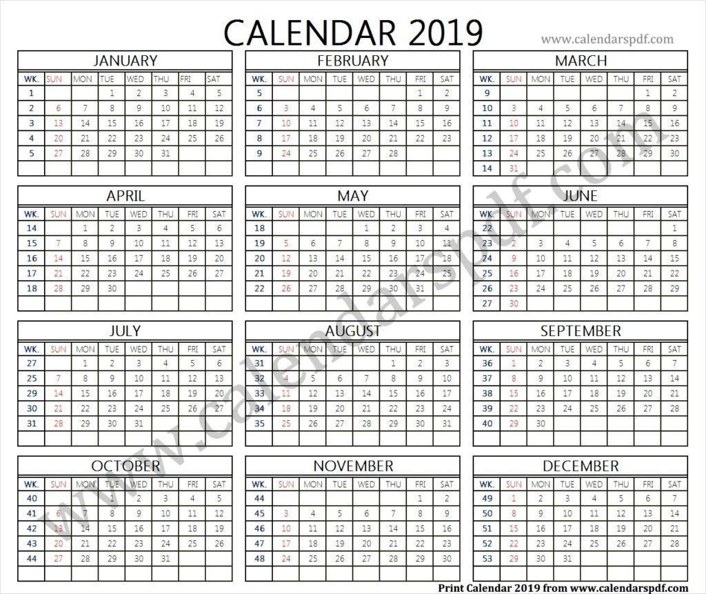 2019 Calendar With Weeks 2019 Calendar Calendar 2019 Yearly