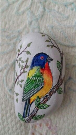 Painted bunting rock