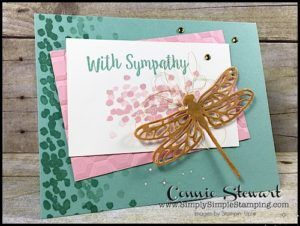 Now or wow flash card with sympathy dragonfly video no 89 now or wow flash card with sympathy dragonfly video no 89 simply simple stamping m4hsunfo