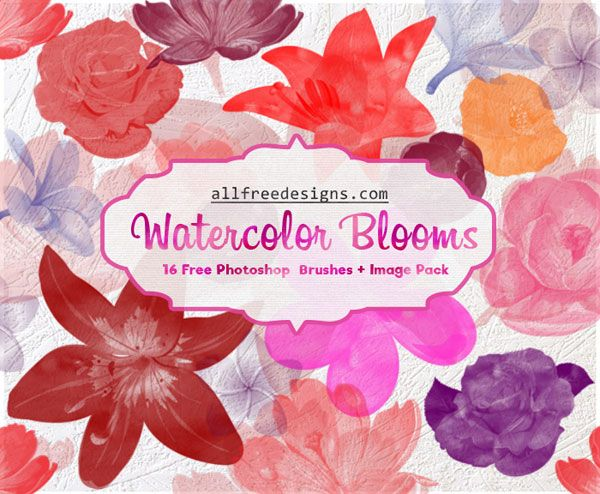 Watercolor Flower Brushes 16 Beautiful Watercolor Designs For