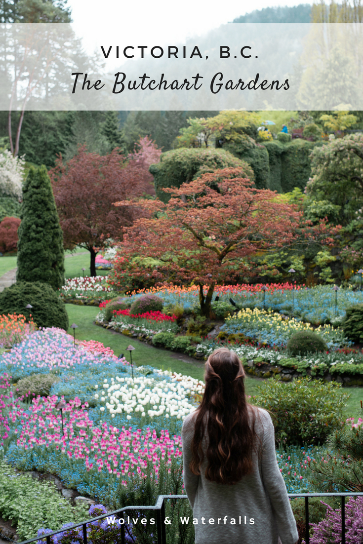 7 Reasons You Should Visit The Butchart Gardens — Wolves & Waterfalls #butchartgardens
