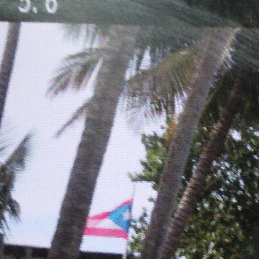 EN PIÑONES LOIZA PUERTO RICO