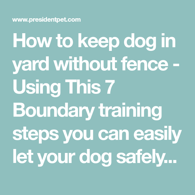 How To Keep Dog In Yard Without Fence Using This 7 Boundary Training Steps You